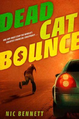 Dead Cat Bounce