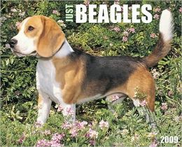 2009 Beagles (Just) Wall Calendar