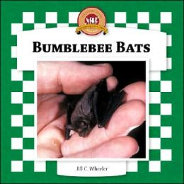 Bumblebee Bats