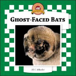 Ghost-Faced Bats