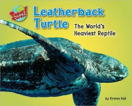 Leatherback Turtle: The World's Heaviest Reptile