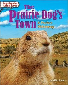 The Prairie Dog's Town: A Perfect Hideaway