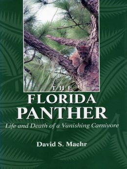 The Florida Panther: Life And Death Of A Vanishing Carnivore