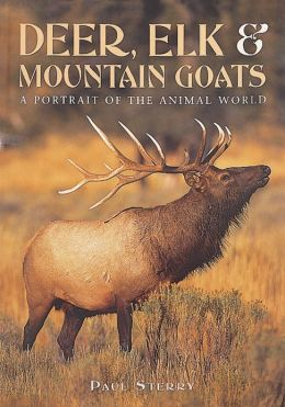 Deer, Elk, & Mountain Goats: A Portrait Of The Animal World