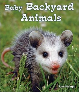 Baby Backyard Animals