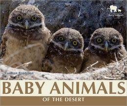 Baby Animals of the Desert