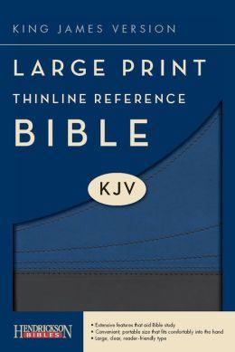 KJV LP Thinline Reference Bible, Slate/Blue