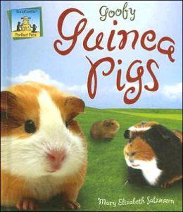 Goofy Guinea Pigs