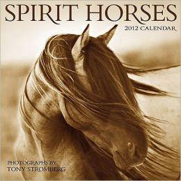 2012 Spirit Horses Wall Calendar