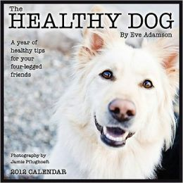 2012 Healthy Dog: A Year of Healthy Tips for Your Four-Legged Friends Wall Calendar