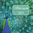 Book Cover Image. Title: 2014 Peacocks Wall Calendar, Author: Mud Puddle Books