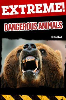 Extreme: Dangerous Animals