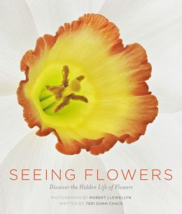 Seeing Flowers: Discover the Hidden Life of Flowers
