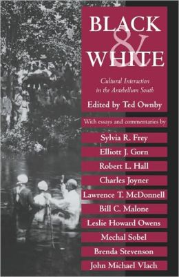Black and White: Cultural Interaction in the Antebellum South
