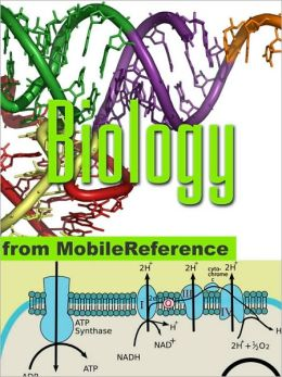 Biology Study Guide: Prokaryotes, Archaea, Eukaryotes, Viruses, Reproduction, Mendelian Genetics, Molecular Biology, Cell Signaling, Human Anatomy, Chemical Review