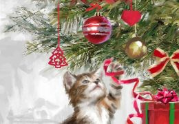 Kitten's Christmas Pop-up Christmas Boxed Card