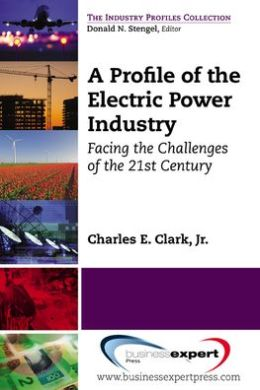 A Profile of the Electric Power Industry: Facing the Challenges of the 21st Century