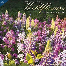 2012 Wildflowers 12x12 Wall Calendar