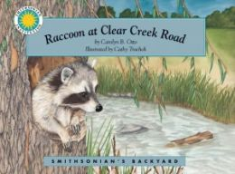 Raccoon at Clear Creek Road (Smithsonian's Backyard Series)