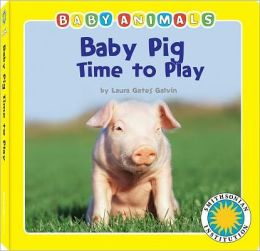Baby Pig: Time to Play