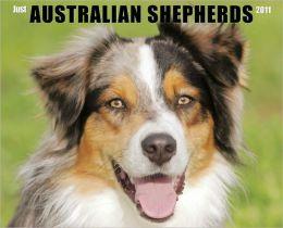 2011 Australian Shepherds Wall Calendar