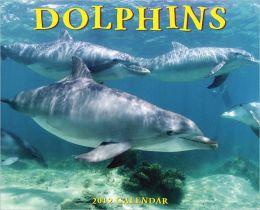 2012 Dolphins Wall Calendar