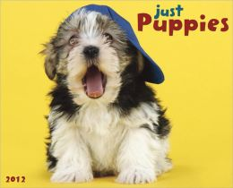 2012 Puppies Wall Calendar