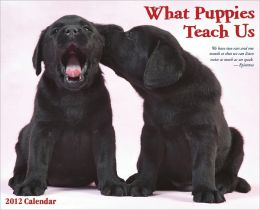 2012 What Puppies Teach Us Wall Calendar