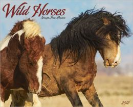 2012 Wild Horses Wall Calendar