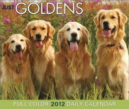 2012 Just Goldens Daily Box Calendar