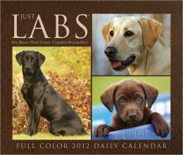 2012 Just Labs Daily Box Calendar