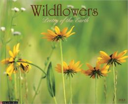 2013 Wildflowers Wall Calendar