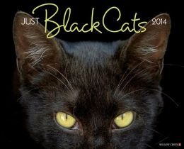 2014 Black Cats Wall Calendar