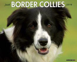 2014 Border Collies Wall Calendar