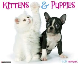 2014 Kittens & Puppies Wall Calendar