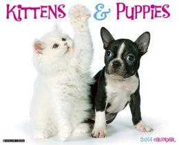 2014 Kittens & Puppies Wall Calendar