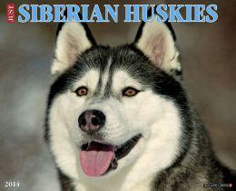 2014 Siberian Huskies Wall Calendar