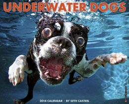 2014 Underwater Dogs Wall Calendar