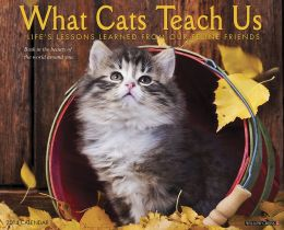 2014 What Cats Teach Us Wall Calendar