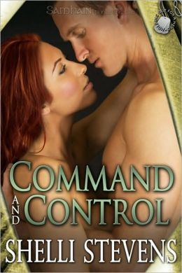 Command and Control (Holding Out for a Hero Series #2)