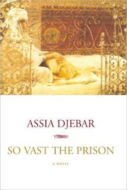 So Vast the Prison: A Novel