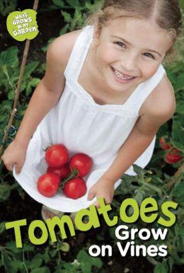 Tomatoes Grow on Vines