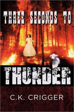 Three Seconds to Thunder