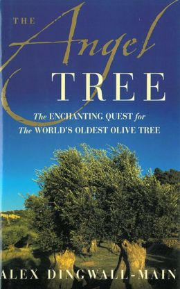 The Angel Tree: The Enchanting Quest for the World's Oldest Olive Tree