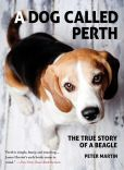 Book Cover Image. Title: A Dog Called Perth:  The True Story of a Beagle, Author: Peter Martin