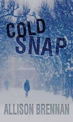 Cold Snap (Lucy Kincaid Series #7)