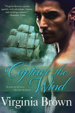 Capture The Wind