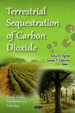 Terrestrial Sequestration of Carbon Dioxide