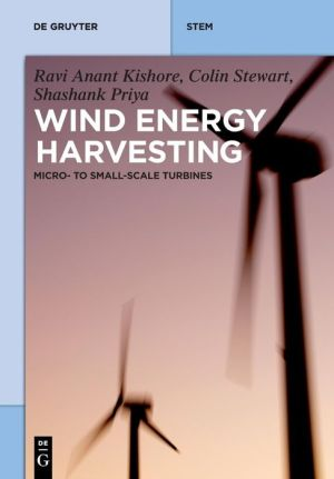 Wind Energy Harvesting: Micro-To-Small Scale Turbines