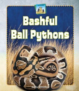 Bashful Ball Pythons eBook